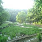 草原・湿原もありました。